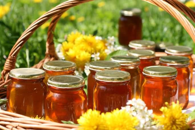 Мед из одуванчиков – фирменное блюдо многих хозяев