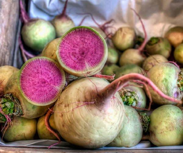 Чтобы вырастить качественный и красивый арбузный редис, требуется грамотно подготовить почву