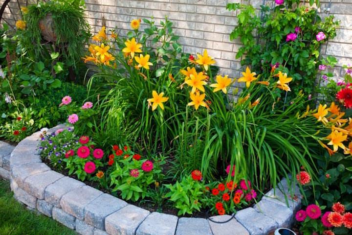 Высота бордюра подбирается такая, чтобы гости и домашние питомцы не вытаптывали растения