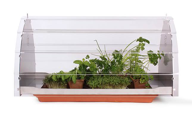 Посадка овощей и их выращивание будет осуществляться непосредственно в квартире благодаря мини-тепличке