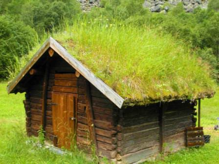 Зеленая крыша своими руками: озеленение крыши дачного дома