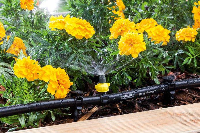 Современные системы орошения – это шланги с форсунками и капельницами, которые можно расставить по всему огороду
