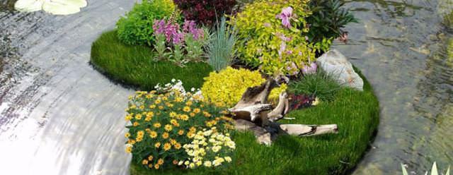 В каждом саду уместно и эффектно будет смотреться плавающая клумба