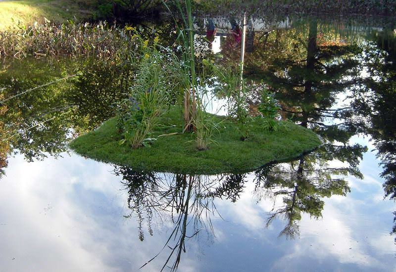 Акваклумба для искусственного водоема