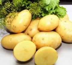 Картофель «Бентье» известен превосходными вкусовыми качествами