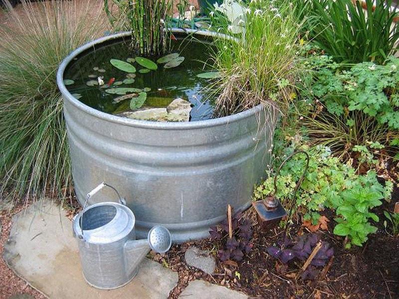 Интересный искусственный водоем: просто покрасьте бочку, налейте воды и высадите вокруг цветы
