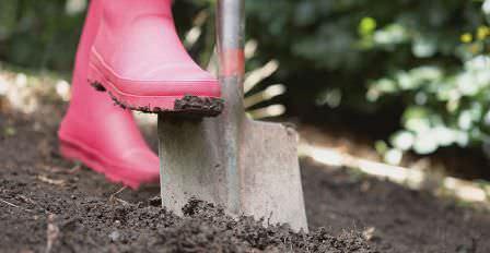Рекомендуем прислушаться к мнению специалистов по поводу уничтожения сорняков на даче