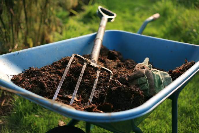 Для улучшения качественного состава почвы используется компост