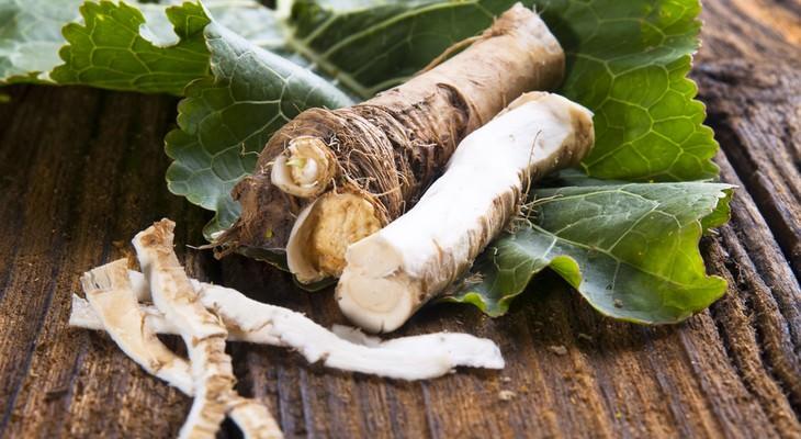 В условиях обычного бытового холодильника корни хрена могут сохранять товарный вид и вкусовые качества на протяжении трёх недель