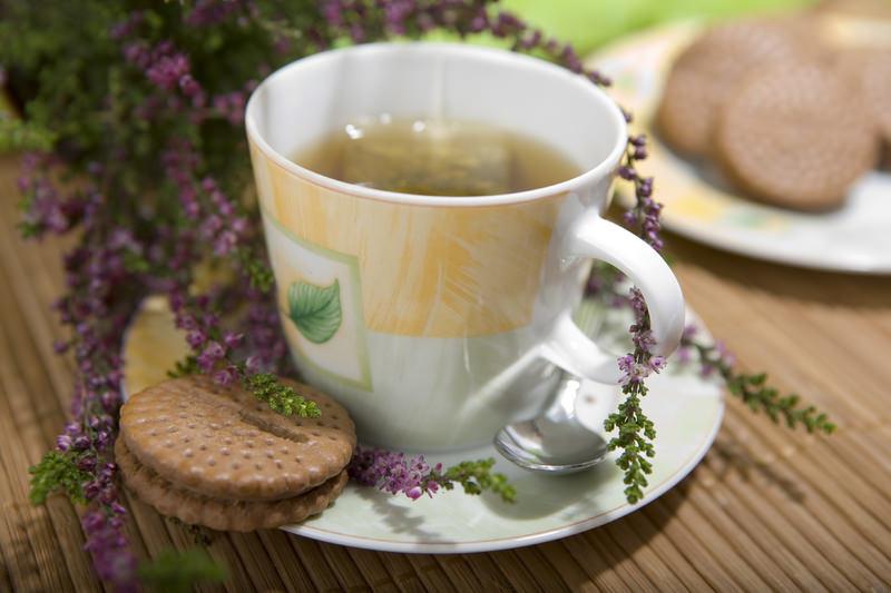 Вересковый чай обладает потогонным, успокаивающим свойством, а также способствует отхождению мокроты при простудных и легочных заболеваниях