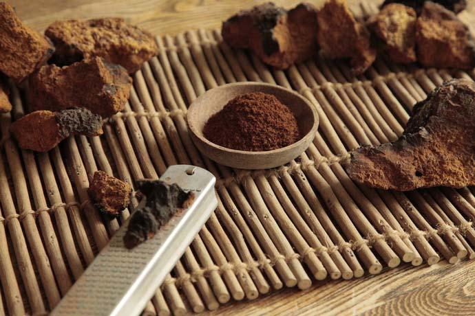 Многочисленные целебные качества и полезные свойства чаги известны очень давно и широко используются в домашних условиях
