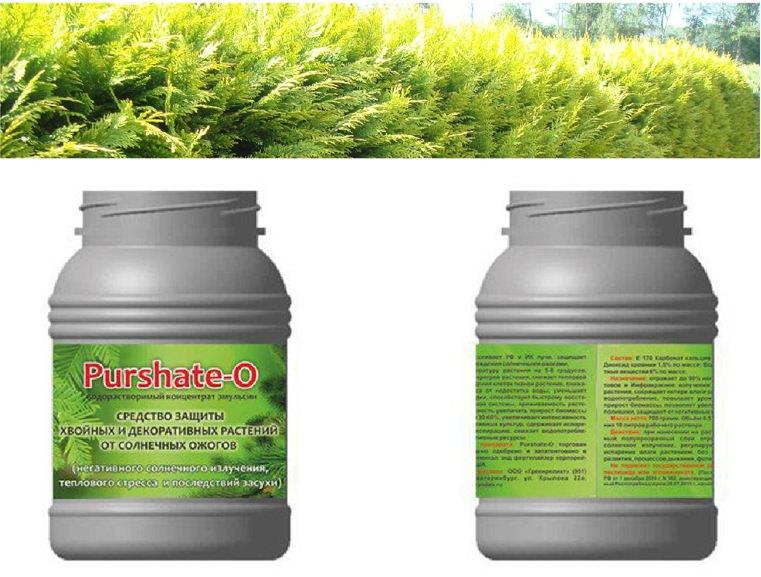 Средство Пуршат-О является оптимальным средством для защиты растений