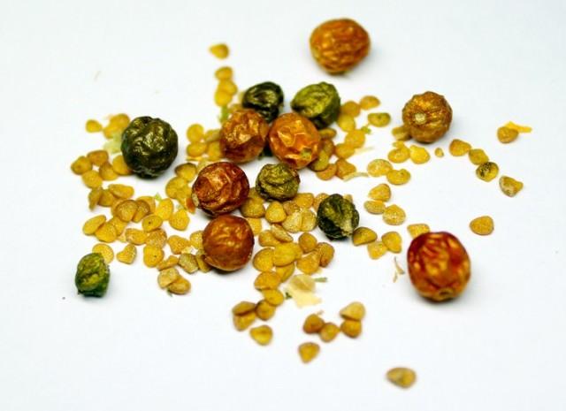 Ашваганду можно выращивать из семян
