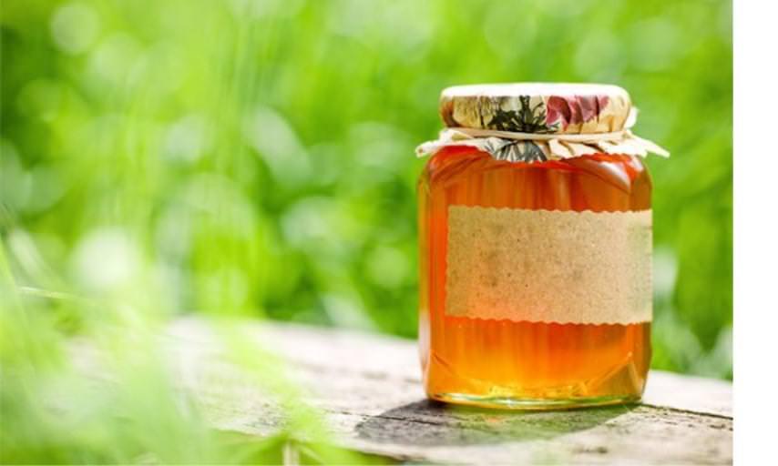 Ивовый мед ценится за вкусовые и лечебные свойства