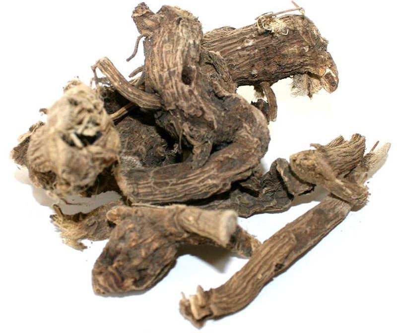 Корневища и корни алтея выкапываются в весенний или осенний период