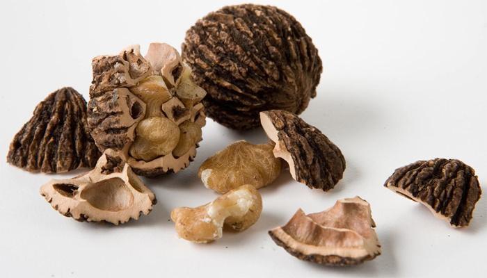 Плоды черного грецкого ореха обладают невероятной пользой, что позволяет использовать их с профилактической и лечебной целью