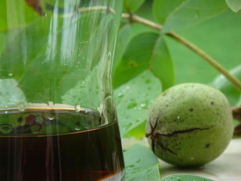 Сок черного ореха хорошо зарекомендовал себя в комплексной терапии практически любых опухолевых процессов
