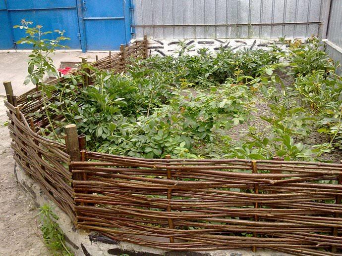 Бордюры для клумб (41 фото): чем огородить цветник, как сделать декоративные из кирпича, камня своими руками