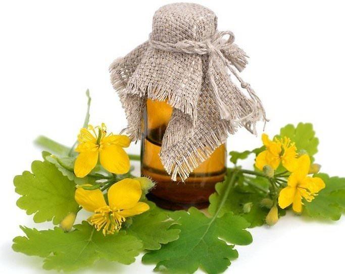 Масло чистотела применяется наружно для лечения возрастных кожных заболеваний