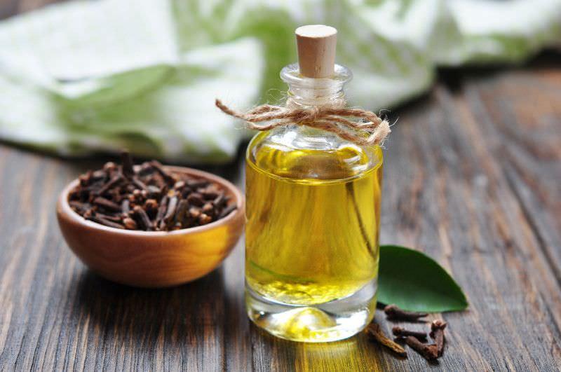 Настойка гвоздики на водке используется при простудных заболеваниях и бронхитах