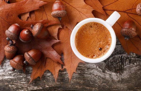В составе кофе из желудей крахмал и белок
