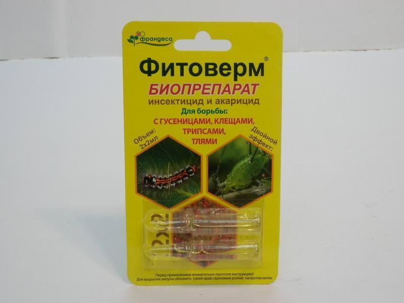 Фитоверм – популярное средство обладает выраженным кишечно-контактным воздействием на вредителей