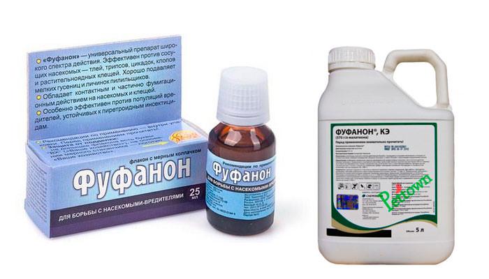 Фуфафон активно используется для борьбы с растительными паразитами, атакующими овощные, плодовые и ягодные культуры