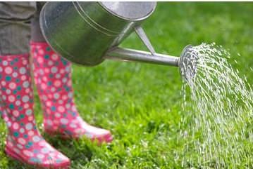 Ухаживать за травой газона не сложно