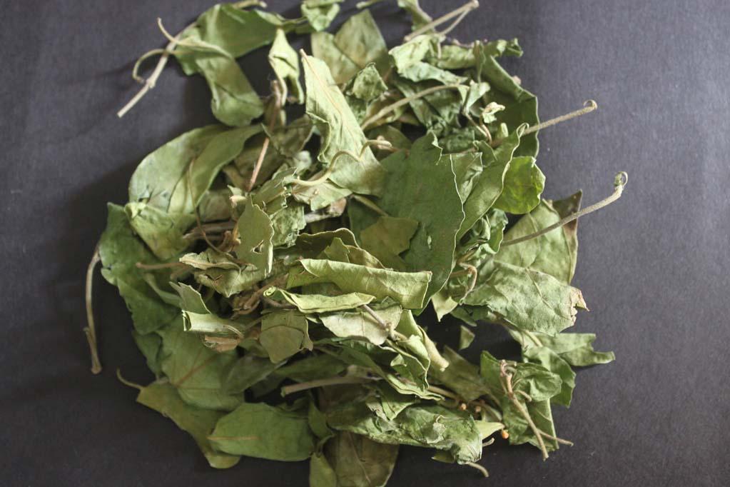 Максимальное количество полезных элементов содержит листва тропической целительницы