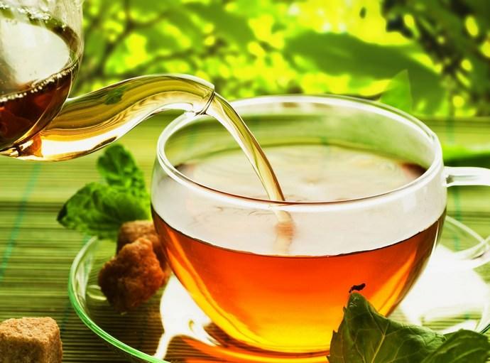 Чай на основе гидрастиса не убивает полезную микрофлору кишечника, действуя избирательно