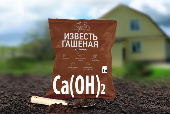 Раскисление почвы можно выполнять гашеной известью