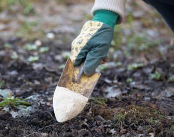 Известкование почвы является распространённым способом химической мелиорации на кислых почвах