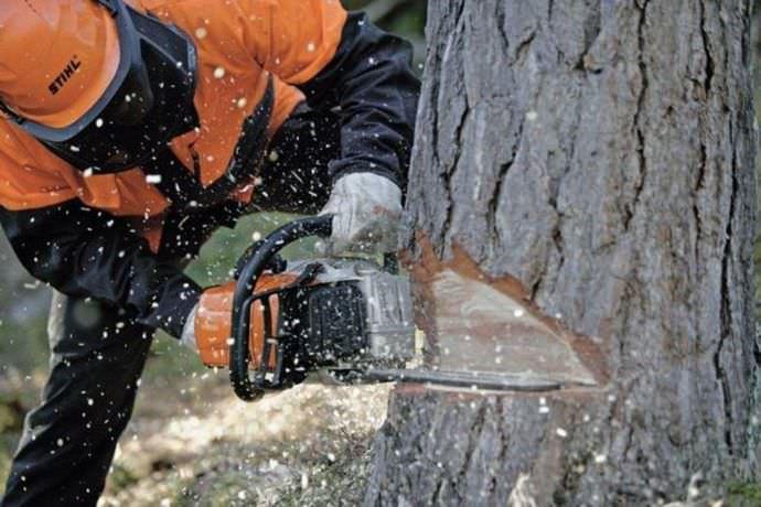 Пилить дерево при помощи бензопилы намного быстрее и удобнее
