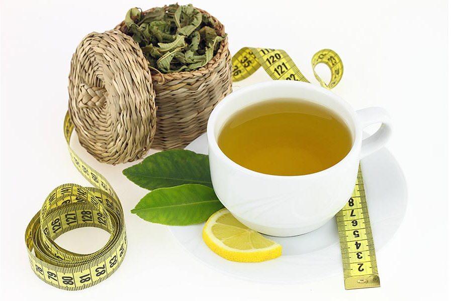Чай из камелии пьют для уменьшения массы тела, особенно при ожирении различных степеней