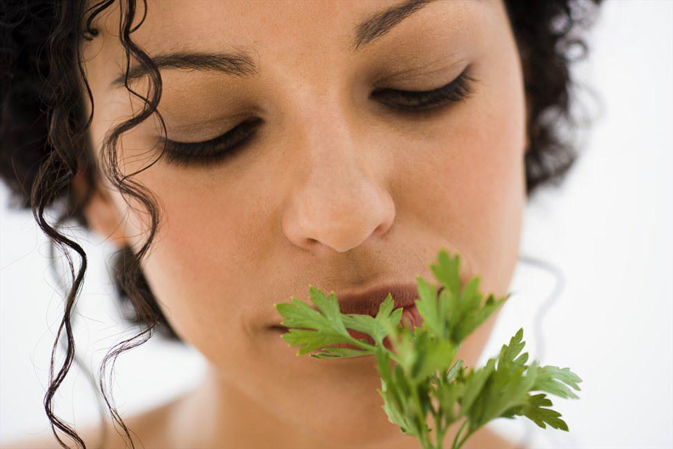 Прием нескольких листочков кинзы вернет организму половую активность и желание интимных отношений