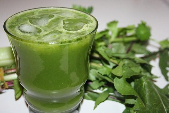 Для лекарственных целей иногда используют сок цимицифуги, выжатый из листьев и стеблей