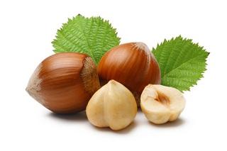 С давних времен орешник использовался в народном и традиционном лечении