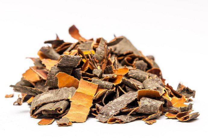 Содержание в коре орешника вяжущих и дубильных веществ, бетулина, красящего желтого компонента, и лигноцерилового спирта делает ее пригодной для употребления
