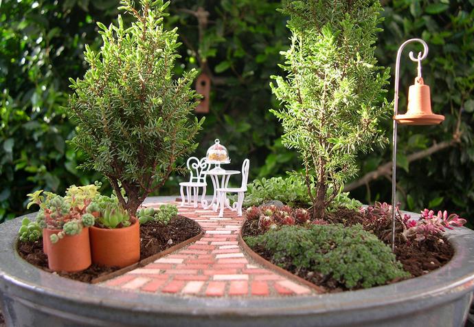 Главным критерием в подборе растений для будущей композиции является не слишком бурный рост цветов