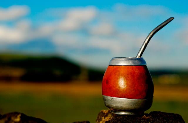 Парагвайский чай мате обычно заваривают в специальной посуде: чашечке – калебасе