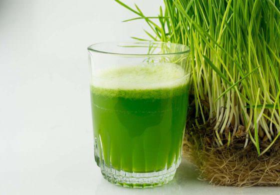 Положительные отзывы имеет также сок, получаемый из свежих листьев пырея