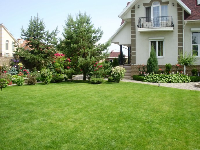 Партерные газоны нуждаются в тщательном уходе, помогающем поддерживать их безупречный внешний вид