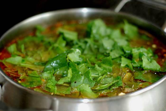 Сныть достаточно часто используется для приготовления витаминных зеленых щей