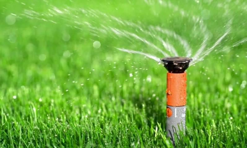 Поливы газона должны быть умеренными, без пересыхания дерна и избыточного увлажнения