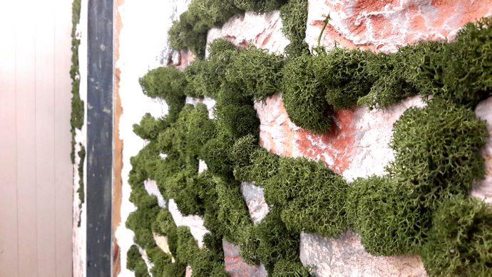 Живые ковровые покрытия на основе мха позволяют создавать вокруг себя очень благоприятную атмосферу