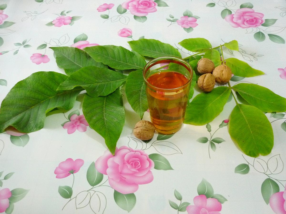 Чай из листьев грецкого ореха используется для лечения сахарного диабета, подагры, диареи, цистита, заболевания желчного пузыря