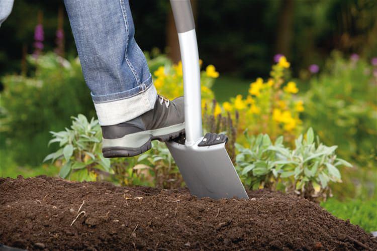 Почву на грядах в процессе предварительной подготовке следует подвергнуть глубокой перекопке, удалить все сорняки и растительный мусор