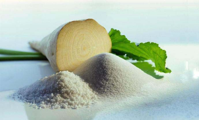 Сахарная свекла выращивается с целью получения сахара