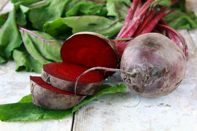 Правильно выращенный и собранный урожай свёклы способен сохраняться на протяжении длительного времени