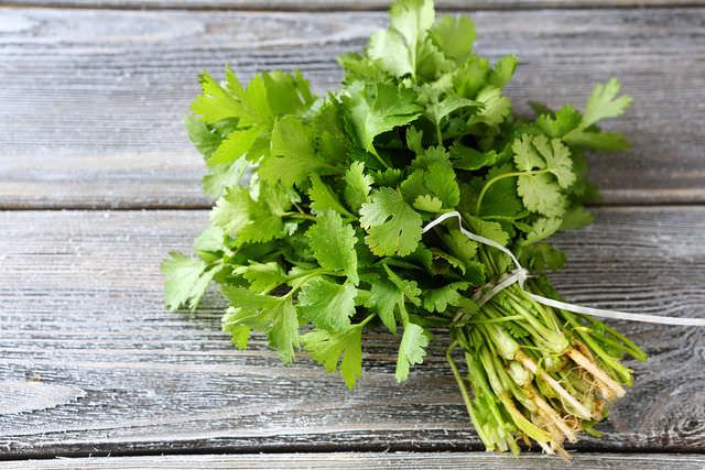 Кинза – кладезь витаминов, поэтому чрезвычайно полезна для здоровья